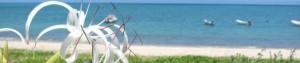 cropped-100801asani_beach_81.jpg