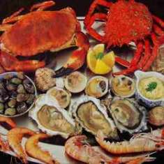 sea-food-250x250