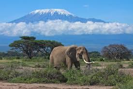 kilimanjaro-tazania
