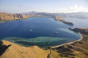 Komodo- Indonesia