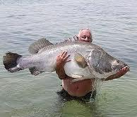 lake victoria uganda-f