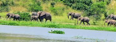 safari-uganda1